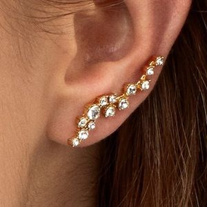 fabfitfun BaubleBar Farah Ear Crawlers Earrings